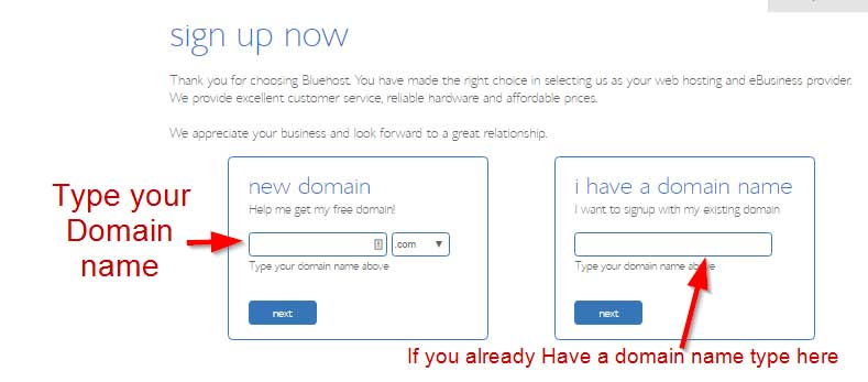 Enter your domain name here