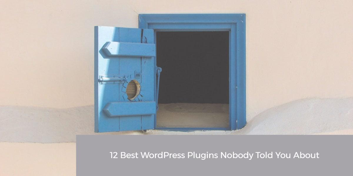 12 best WordPress plugins nobody told about it