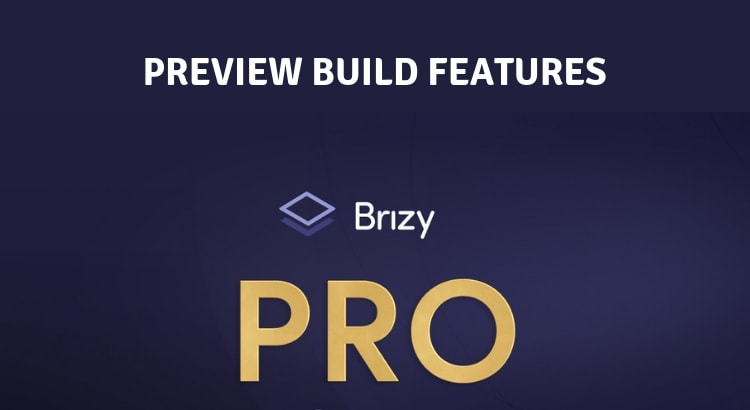 Brizy pro preview build