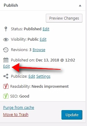 publish time and date in wordpress