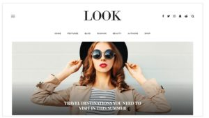 Look WordPress theme