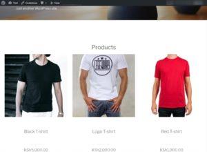 wp shopify website
