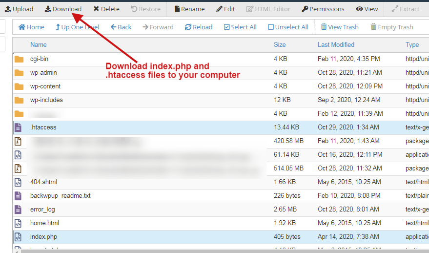 download index.php and .htaccess files to your computer
