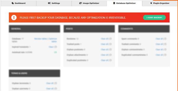 database optimizer